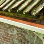 Spring-Clean Your Gutters to Keep Your Home Healthy