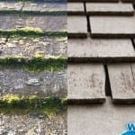 Stop Moss in its Tracks and Save Your Roof with Wet & Forget Outdoor!