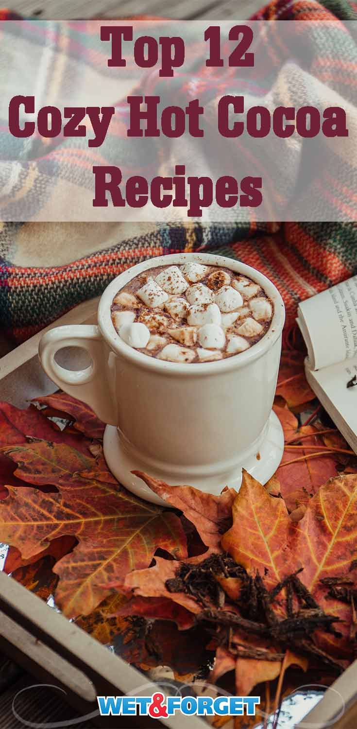 Stay cozy this winter with these 12 delicious hot cocoa recipes!