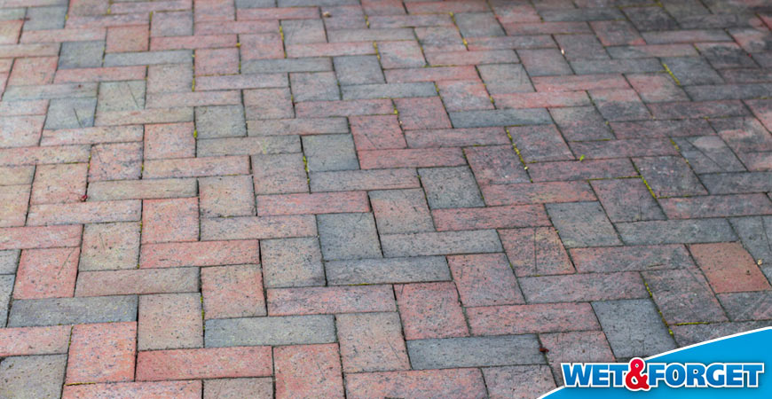 wet and forget best brick cleaner