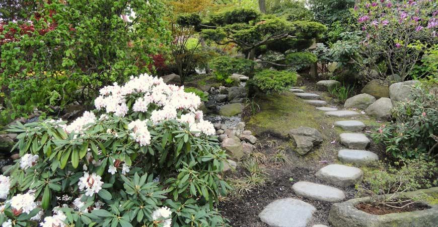 gardening path ideas