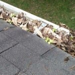 Essential Autumn Roof Maintenance to Stay Warm and Dry This Winter