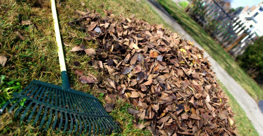 lawn and garden cleanup zones