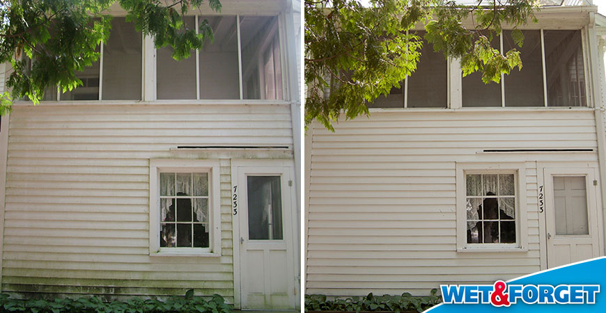 how to remove algae from siding