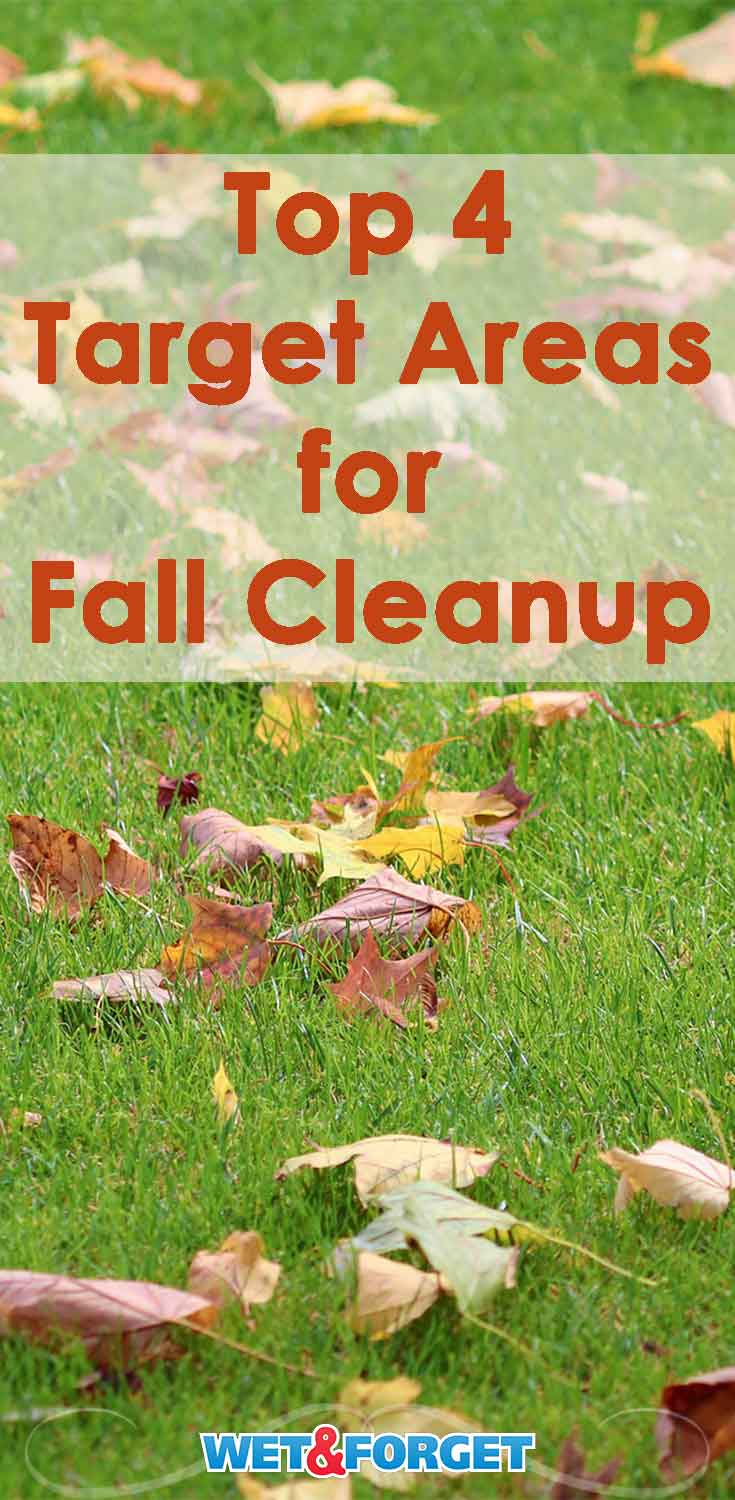 Get your fall cleanup done quickly and easily by targeting these 4 areas of your backyard!