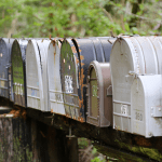 Boost your Curb Appeal with these 5 Fun Mailbox Decorating Ideas