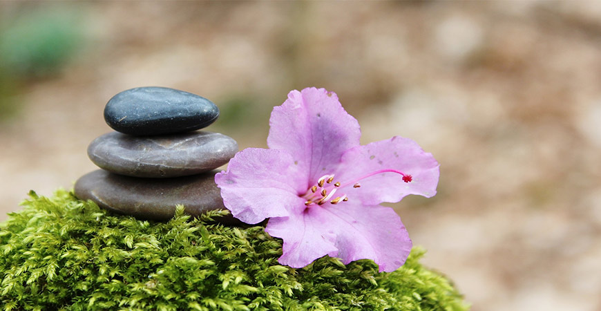 creating peace in life with feng shui