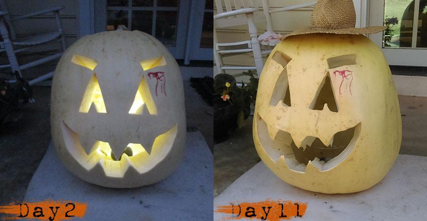 how-to-preserve-pumpkins