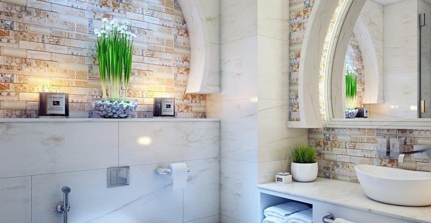 Bathroom Plants That Thrive