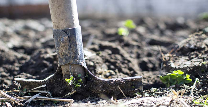 Get your garden beds ready for spring with these tips!