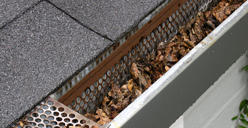 gutter drainage options