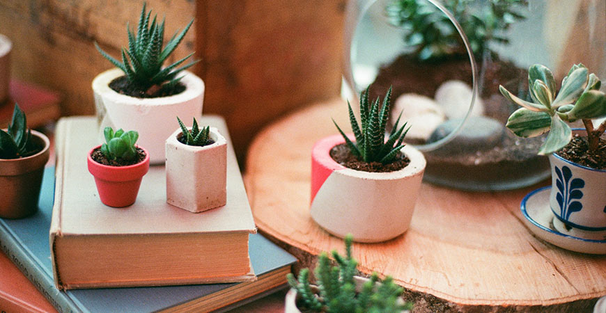 Use these decorating ideas to add nature into your home.