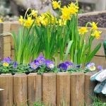 Best Flower Bed Border Ideas for Savvy Home Gardeners