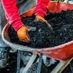 The Benefits of Mulching in the Fall