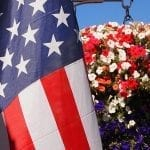 Celebrate Patriotic Holidays with Red, White, and Blue Flowers