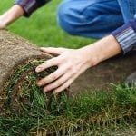 How to Lay Sod: Get a Head Start on a Beautiful Lawn